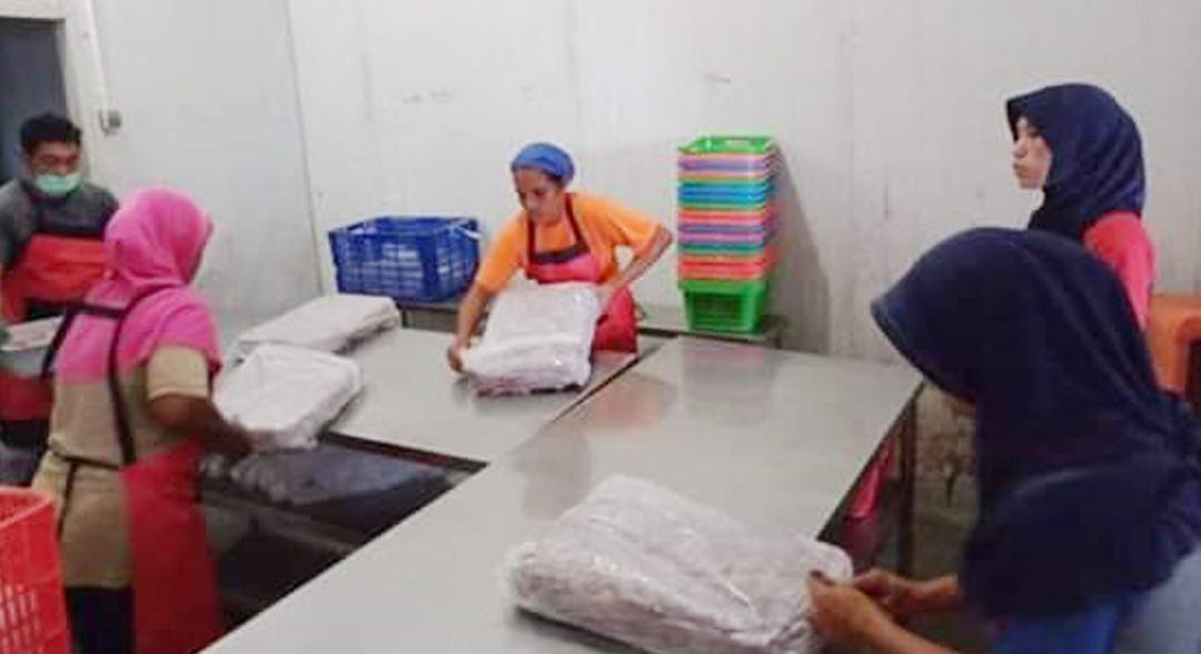 Pemkab Halbar Ekspor 27 Ton Cumi Segar ke Surabaya